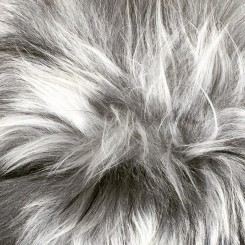 ISLANDSK LAMMESKIND, ORGANIC SHEEP
